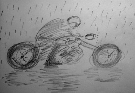 hoj-i-regn